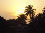 Kerela's backwaters